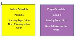 Daily Timetable -  Yellow/Purple Schedule